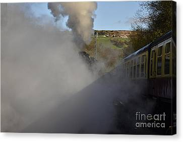 Steam Steam Steam Canvas Print by Nichola Denny