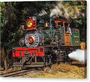 Steam Train Dixiana Canvas Print