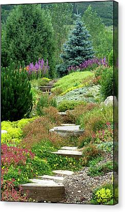 Steamboat Garden Path Canvas Print by Peggy Dietz