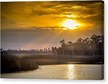 Steamy Hammock Canvas Print by Marvin Spates