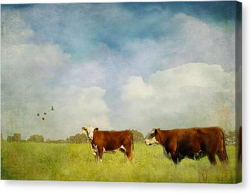 Country Scene Canvas Print - Steamy Hot Summer Days by Jan Amiss Photography