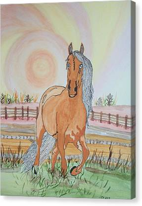 Stech Of A Horse Canvas Print by Connie Valasco