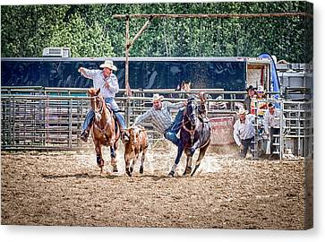 Canvas Print featuring the photograph Steer Wrestling With An Audience by Darcy Michaelchuk