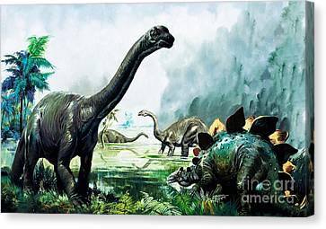 Stegosaurus, Brachiosaurus,  Prehistoric Animals Canvas Print