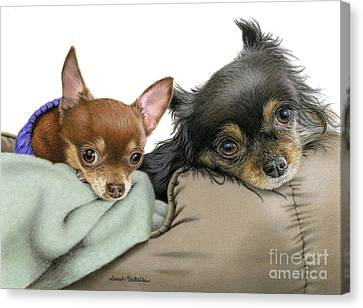 Long Bed Canvas Print - Stella And Nettie by Sarah Batalka