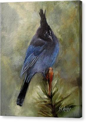 Stellar Of A Bird Canvas Print by Mary St Peter