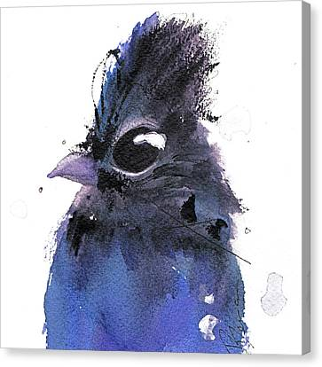 Canvas Print featuring the painting Steller Jay by Dawn Derman