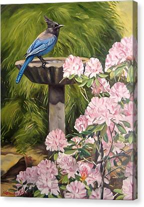 Steller Jay Canvas Print by Norman Kelly
