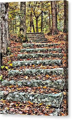 Canvas Print featuring the photograph Step Into The Woods by Debbie Stahre