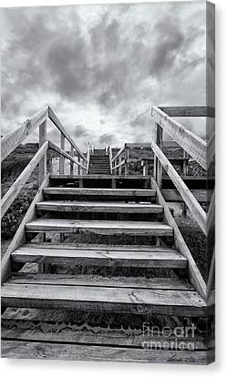 Canvas Print featuring the photograph Step On Up by Linda Lees