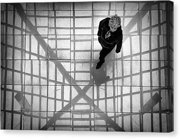 Canvas Print featuring the photograph Stepping Into The Web by John Williams