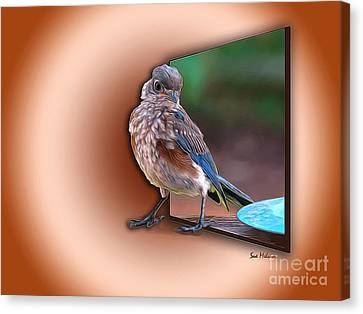 Stepping Out Into The Spotlight Canvas Print by Sue Melvin