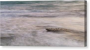 Canvas Print featuring the photograph Stepping Stone by Alex Lapidus