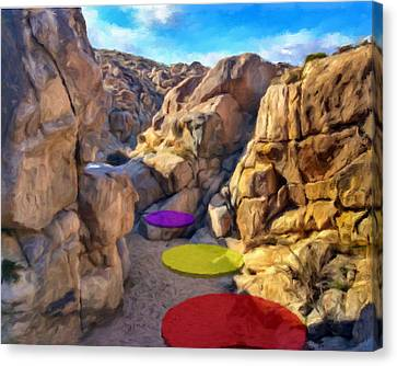 Stepping Stones Canvas Print by Snake Jagger