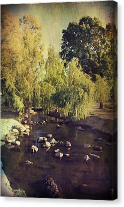 Stepping Stones To My Heart Canvas Print by Laurie Search