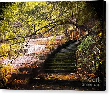 Steps At Buttermilk Falls Canvas Print by Robert Gaines