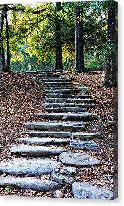 Steps Of Fall Canvas Print