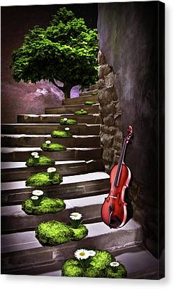 Steps Of Happiness Canvas Print by Mihaela Pater