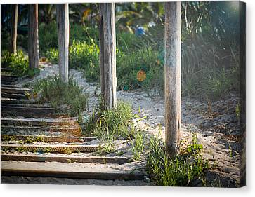 Steps Off The Beach Canvas Print