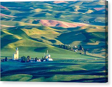 Contour Farming Canvas Print - Steptoe View by Todd Klassy