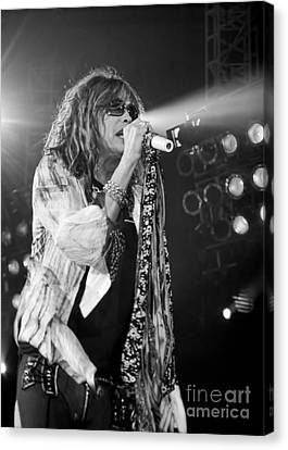 Steven Tyler In Concert Canvas Print by Traci Cottingham