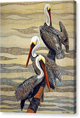 Steves Fishing Buddies Canvas Print by Suzanne McKee