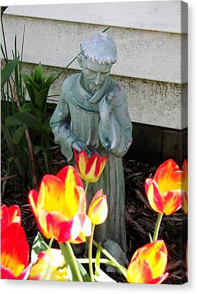 Canvas Print featuring the photograph St.francis by Judy Via-Wolff