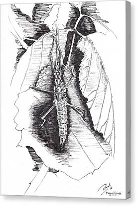 Stick Canvas Print by Ramiliano Guerra