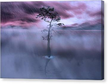 Stick Together The Storm Will Pass Canvas Print by Gray  Artus