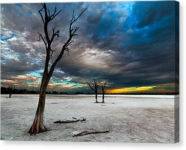 Wa Canvas Print - Still Here by Julian Cook