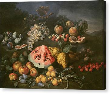 Still Life Canvas Print by Bartolomeo Bimbi