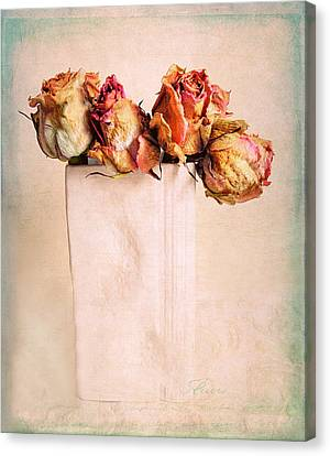 Still Life Rose Canvas Print by Jessica Jenney
