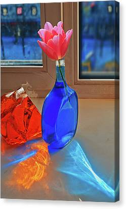 Canvas Print featuring the photograph Still Life With A Flower by Vladimir Kholostykh