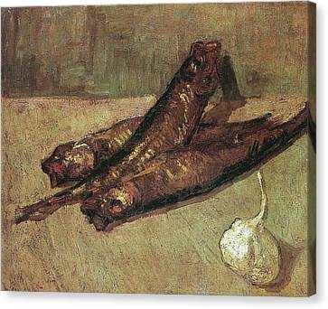 Still Life With Bloaters And Garlic, 1887 Canvas Print by Vincent Van Gogh