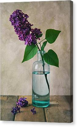 Canvas Print featuring the photograph Still Life With Fresh Lilac by Jaroslaw Blaminsky