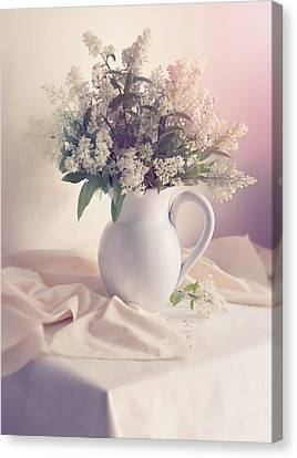 Still Life With Fresh Privet Flowers Canvas Print