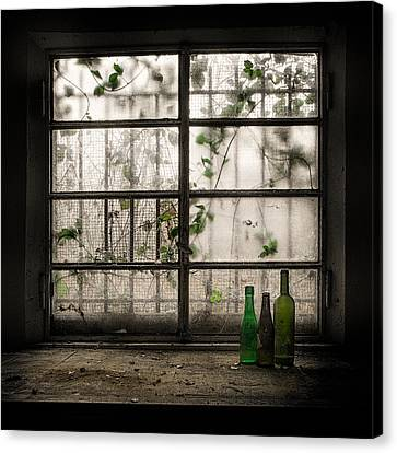 Still-life With Glass Bottle Canvas Print by Vito Guarino