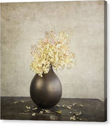 Romance Renaissance Canvas Print - Still Life With Hydrangea by Theresa Tahara