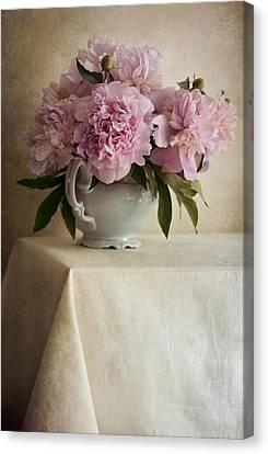 Still Life With Pink Peonies Canvas Print by Jaroslaw Blaminsky