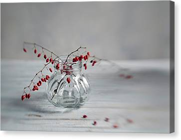 Still Life With Red Berries Canvas Print by Nailia Schwarz