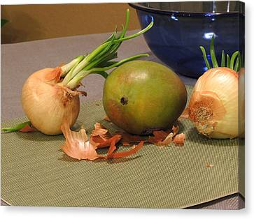Still Life With Sprouted Onions And Mango Canvas Print
