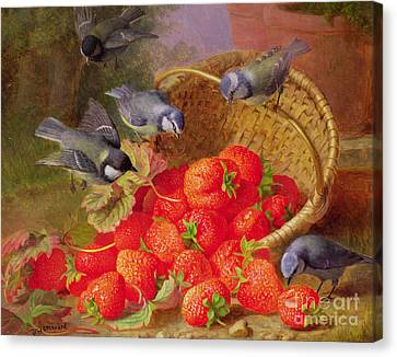 Frenzy Canvas Print - Still Life With Strawberries And Bluetits by Eloise Harriet Stannard