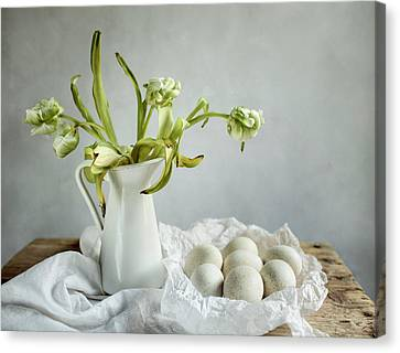 Still Life With Tulips And Eggs Canvas Print
