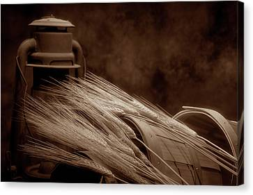Still Life With Wheat I Canvas Print by Tom Mc Nemar