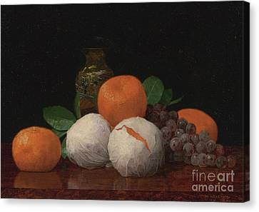 Still Life With Wrapped Tangerines Canvas Print by Celestial Images