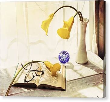 Still Life - Yellow Calla Lilies Canvas Print by Jon Woodhams
