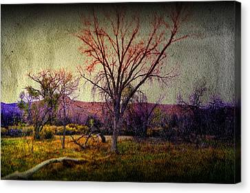 Still Canvas Print by Mark Ross