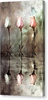 Still Canvas Print by Jacky Gerritsen