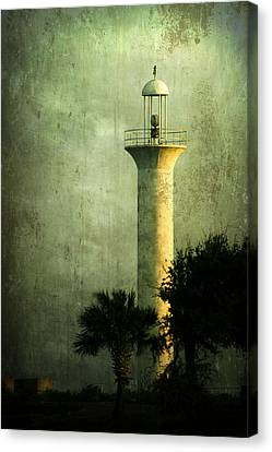 Still Standing Canvas Print by Joan McCool