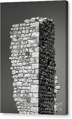 Still Standing Canvas Print by Olivier Le Queinec
